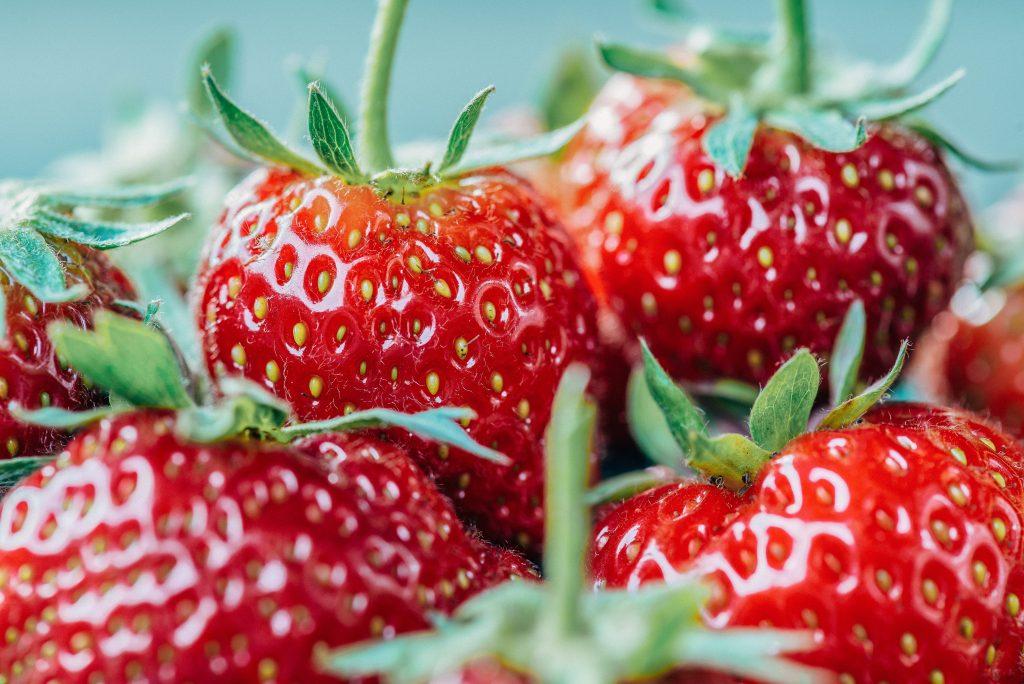 Belles fraises rouges